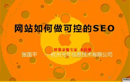 光年(张国平)seo视频教程