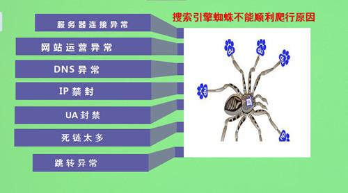 推荐 什么是搜索引擎蜘蛛?如何吸引蜘蛛来抓取页面?