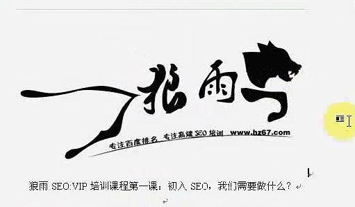 狼雨seo视频教学教程全集在线观看