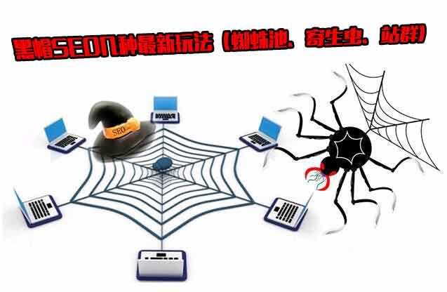 揭开黑帽SEO的神秘面纱:蜘蛛池、寄生虫、站群