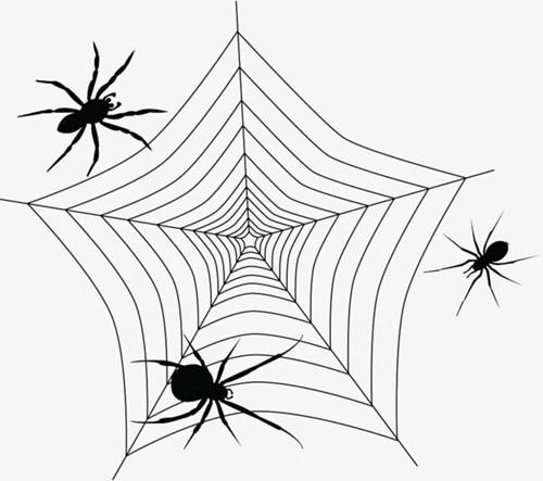 搜索引擎蜘蛛的爬行原理规律