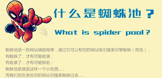 什么是蜘蛛池,详解蜘蛛池的外推方法与技巧